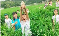 魔奇英语魔奇英语夏令营开启立体农业活动体验